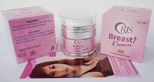Oris Breast Cream Cream Pengencang Payudara Di Jakarta Hp 081390504985
